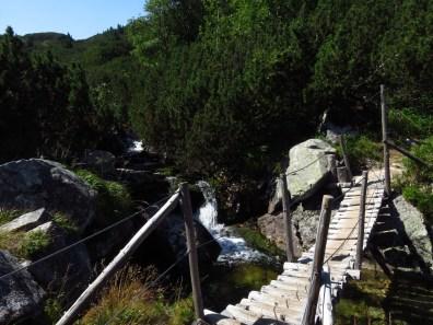 Suspension bridge over the Pietrele stream