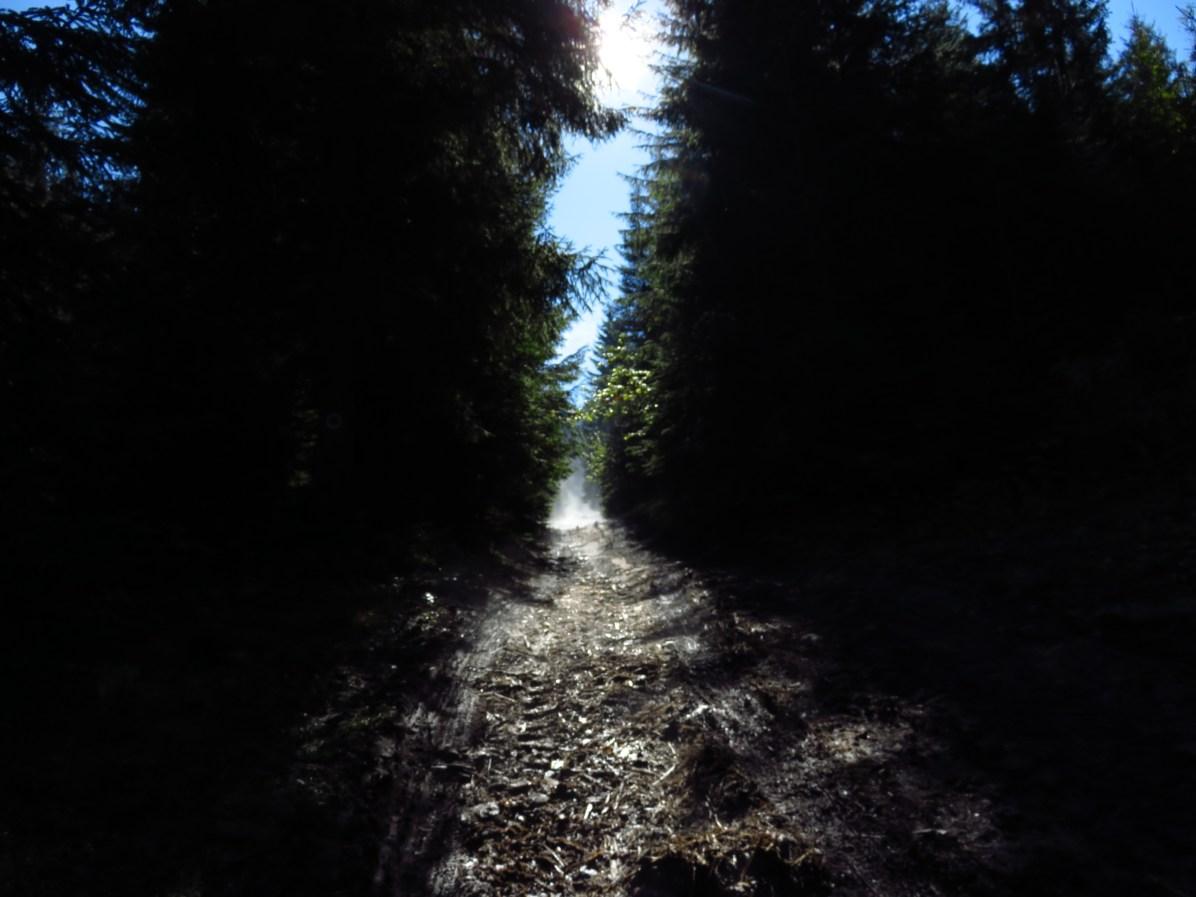 The muddy road