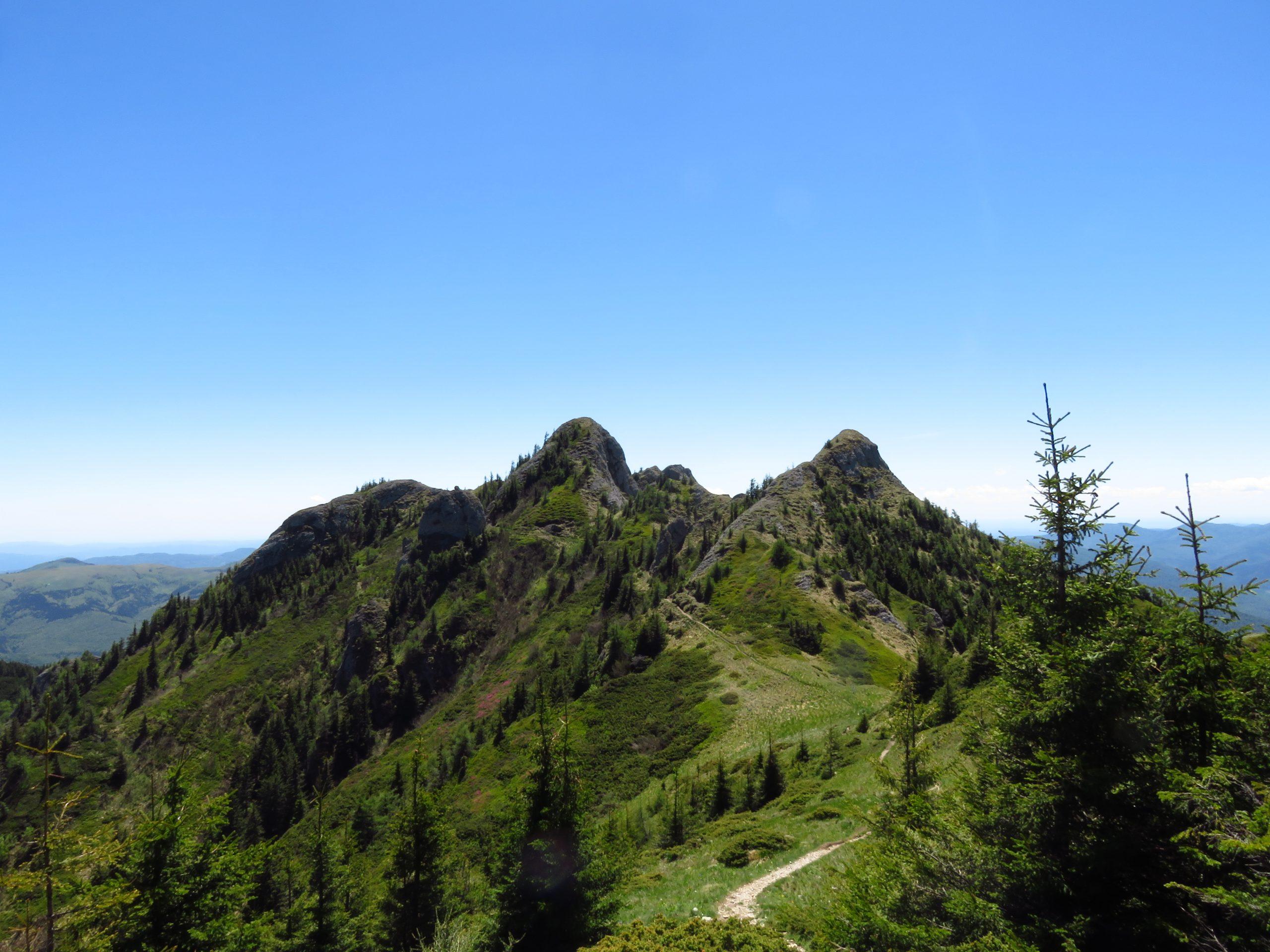 ciucas mountains romania gropsoarele spur
