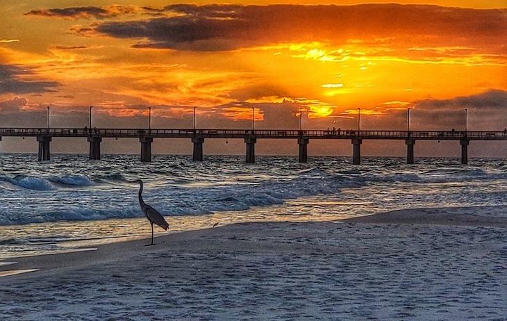 beach front lodge gulf shores roamilicious