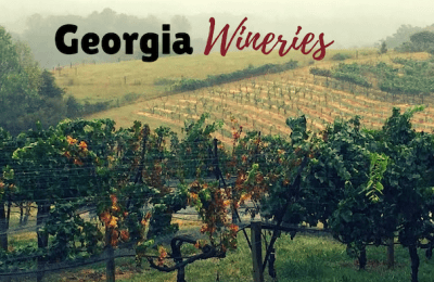 north-georgia-wineries