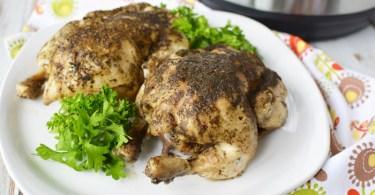 best instant pot cornish hens roamilicious