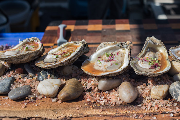 oyster varieties at festival in gulf shores AL Roamilicious