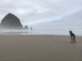 I love running on the beach