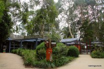 Travel Melbourne Photography Blog Healesville Sanctuary_30
