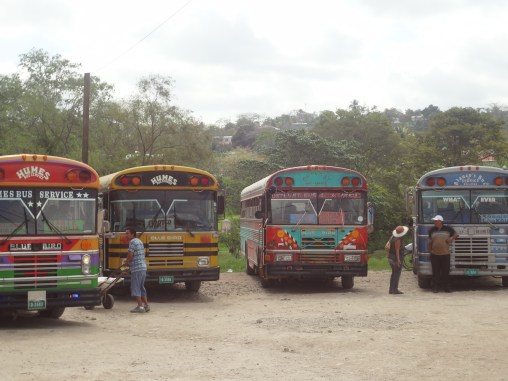 Centeral American Chicken buses