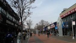 165th_StreetMall