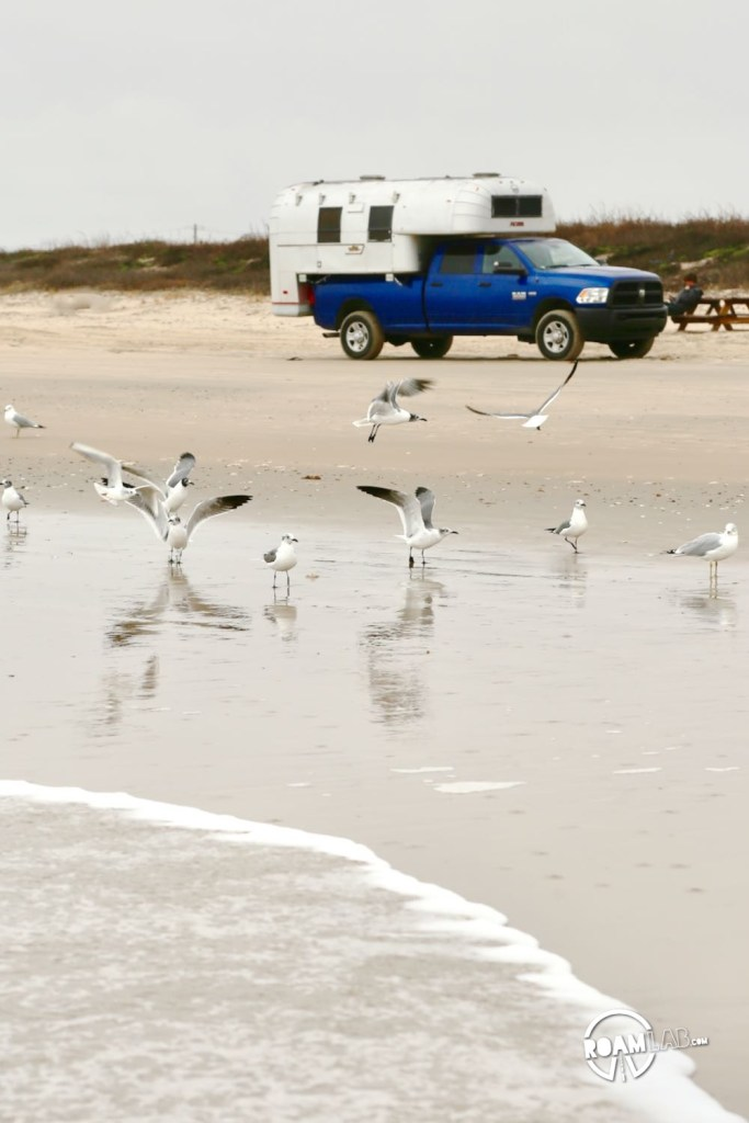 Surf, gulls, and the Avion along Surfside Beach, Texas