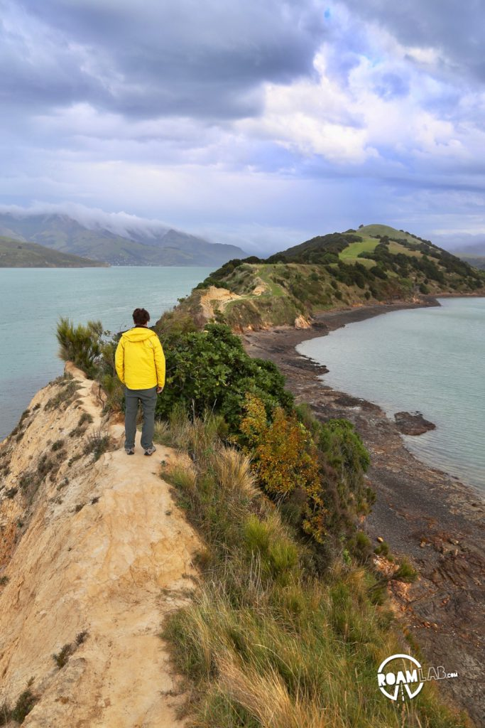 Driving to Christchurch to tramp (hike) the Onawe Track along the Onawe Peninsula between Barrys Bay and Duvauchelle Bay on New Zealand's South Island.