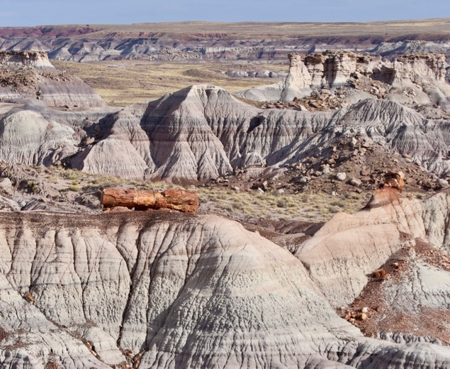 Badlands along the Petrified Forest State Park