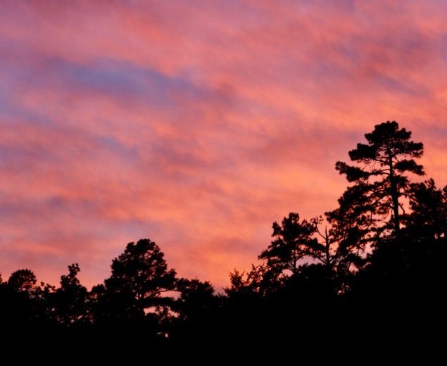 Sunset over ‎⁨Ouachita National Forest