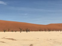 The beautiful red dunes.