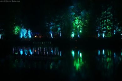 Enchanted Forest_31