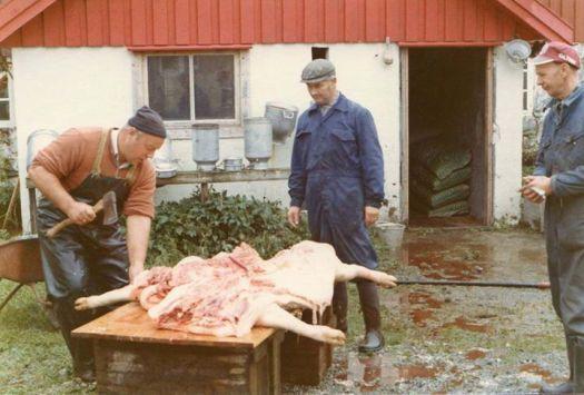 Den gang det var slakting på gårdene. Bildet er fra Leirvågan gård Kiran,1972. Odd Simavik med øks, Einar Maaø og Nils Gerhardsen.