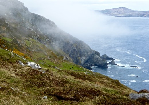 Mist floats in at Tooreen, start of the Lighthouse Loop