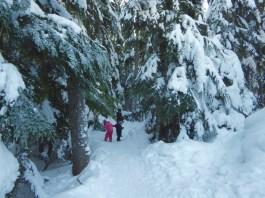 Joffrey Lakeds Trail