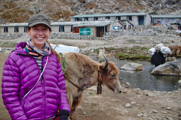 There were Yaks everywhere, yes they were grumpy, but my were they cute! | Everest Base Camp Itinerary