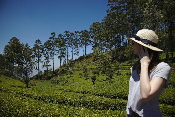 Complete guide to Sri Lanka 2019: Jenny looking out across lush green tea plantations on the walk up to Haputale