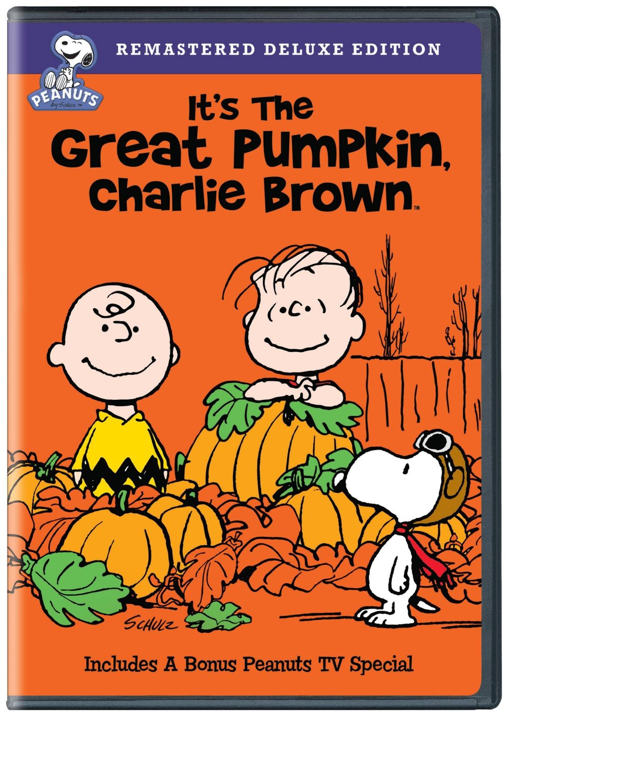 It S The Great Pumpkin Charlie Brown Fun For The Whole