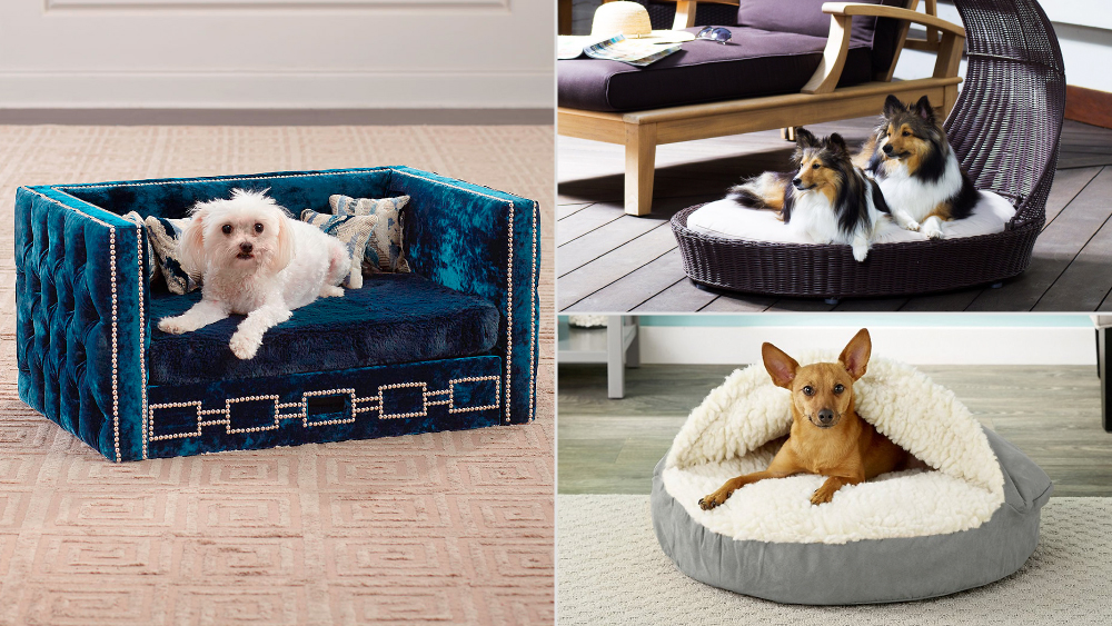 dog beds to buy in 2021 robb report