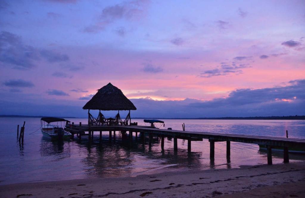 alnatural dockpatio 1024x667 - Vive las vacaciones más verdes de tu vida en estos hoteles eco-friendly