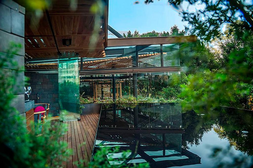 fer1 1024x683 - Cinco restaurantes donde pasar una mágica Noche Buena en CDMX