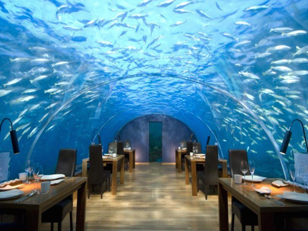 Vive una experiencia submarina en el restaurante Ithaa