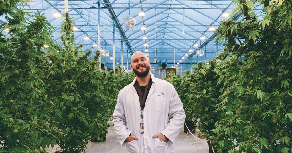 Tanatalus Dan leadoff 1024x538 - Conoce las lujosas marcas de cannabis que Canadá recién legalizó