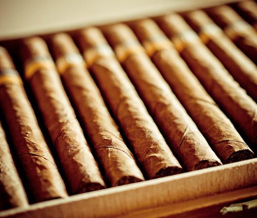 Top: 5 elegantes puros para regalar a papá
