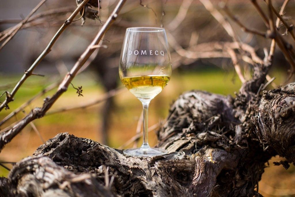 Vino blanco de Casa Pedro Domecq