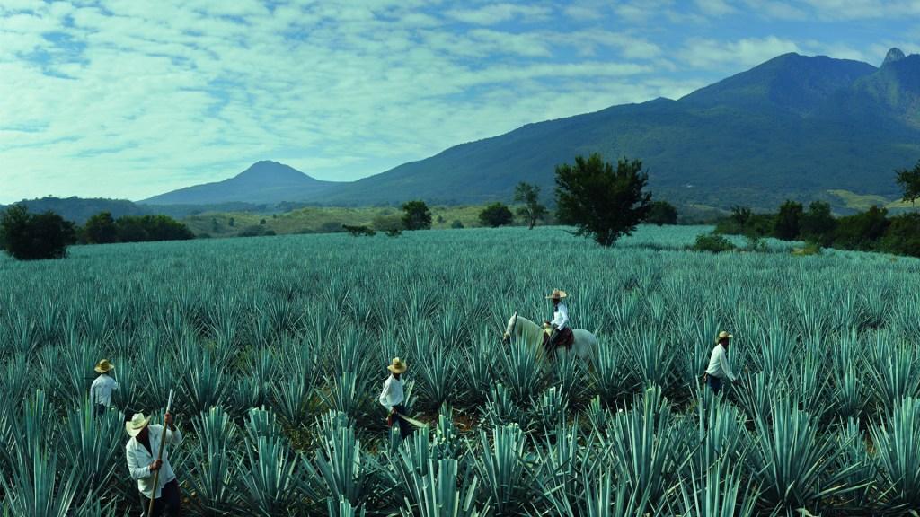 Tequila Reserva de la Familia festeja 25 años de perfección hecha tequila