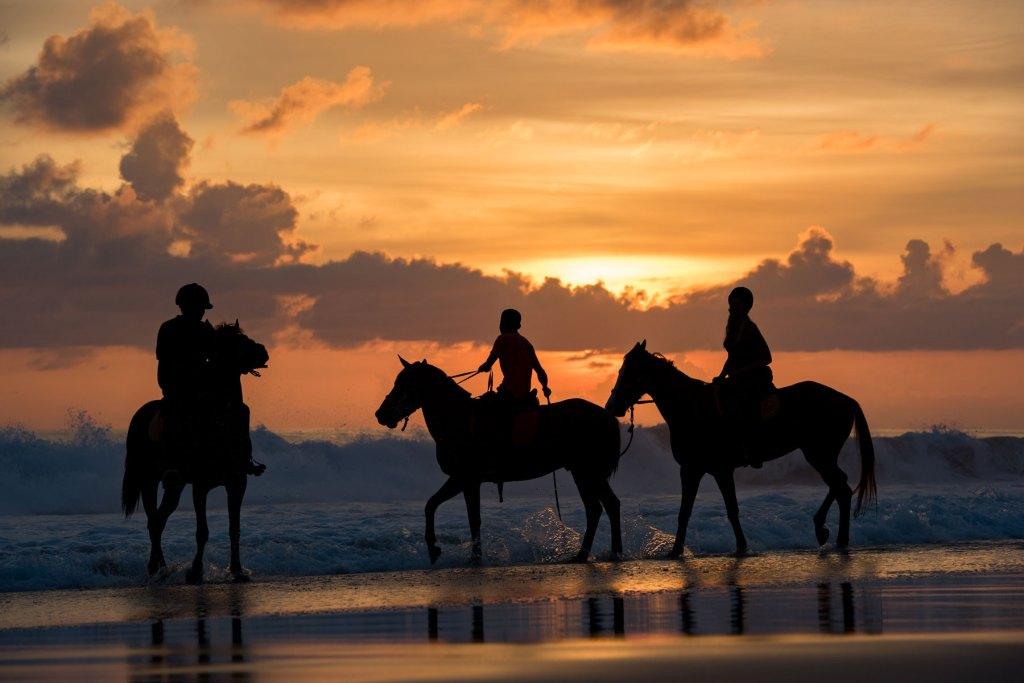 Experiencias únicas en la vida como hacer yoga con caballos en Indonesia