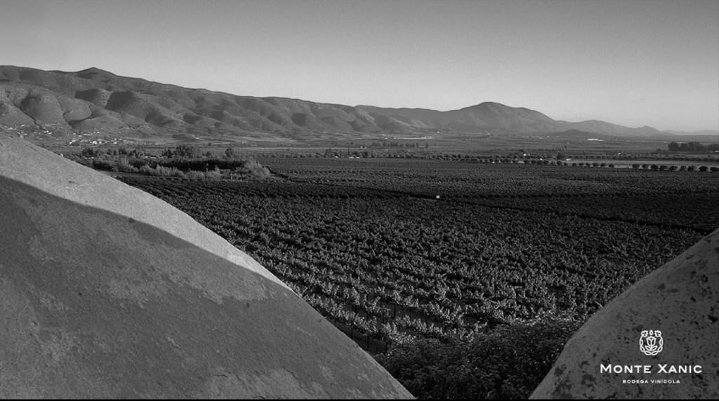 Monte Xanic brilla en Francia y gana cinco oros en el concurso de vino más reconocido