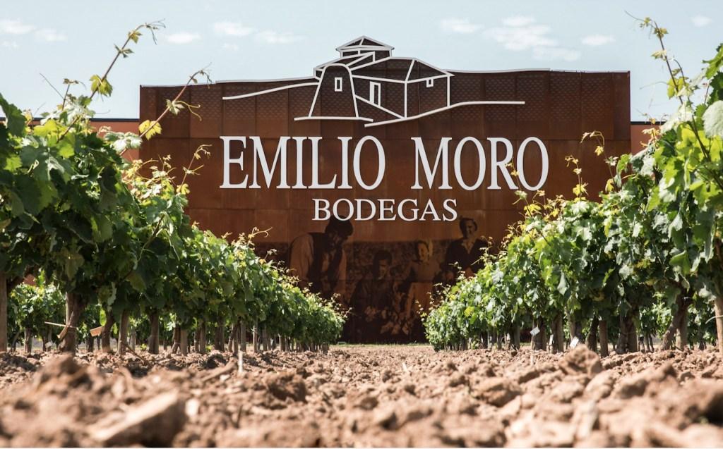 Tips para disfrutar mejor del vino tinto, según el presidente de Bodegas Emilio Moro
