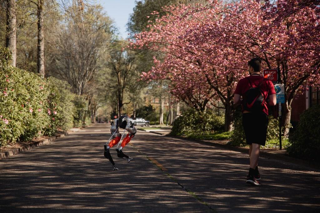 Tu próximo compañero de running podría ser Cassie, el primer robot que corre 5K