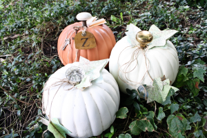 fall pumpkin project decor