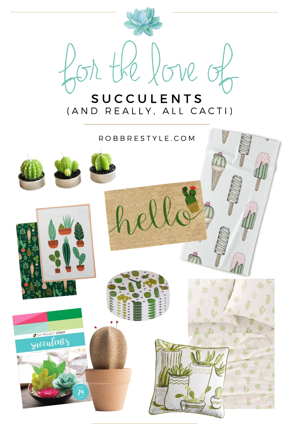 For the love of succulents - home deoor