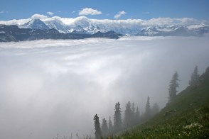 After a long hike though the fog, a small patch of blue sky gave quite a reward. (near Interlakken, Switzerland)