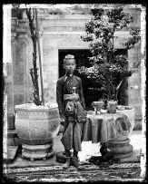 Crown Prince - Siam (Thailand)