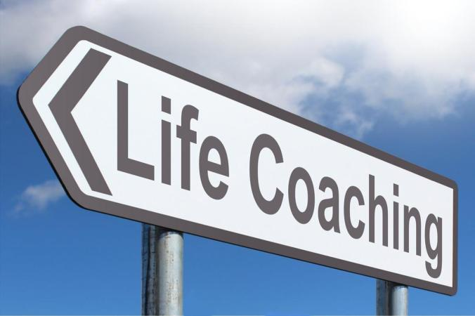 The Life Coach by Robert Caruso