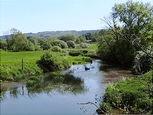 Ten years on Dorset's River Stour, here looking downstream from Hayward Bridge to the spur of Shillingstone Hill that descends to Gains Cross. Photo © Stefan Czapski. Licensed for reuse under a Creative Commons Licence.