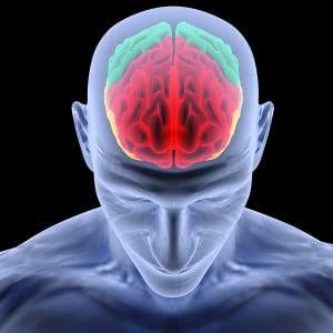 Brain_22-300x300