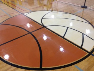 Main Gym floor logo, representing basketball and volleyball