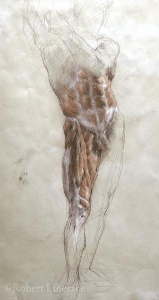 Robert Liberace, anatomy front full figure drawing