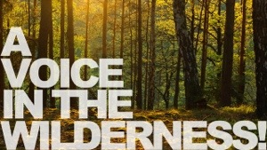 Voice In The Wilderness???