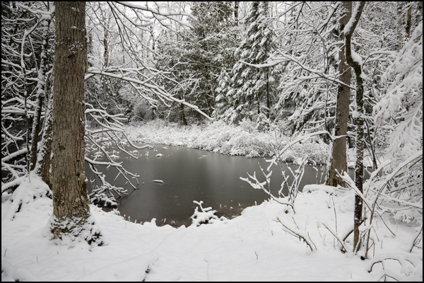 Moffat's Pond