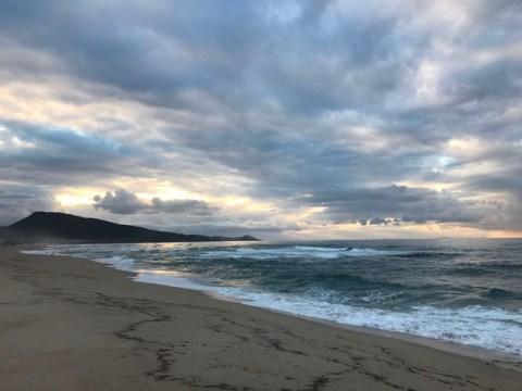 robertoaccardi blog surfcasting