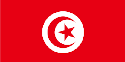 flag bandiera tunisia