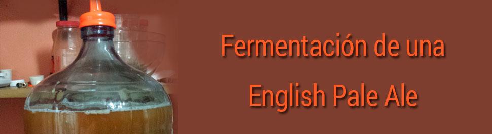 Fermentación de una English Pale Ale día a día