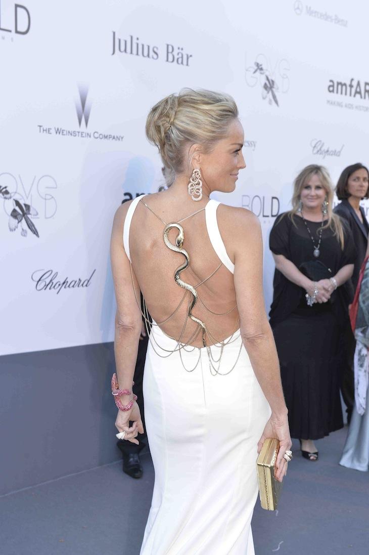 Sharon Stone in Roberto Cavalli